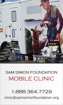 New Mobile Clinic site, coming soon!